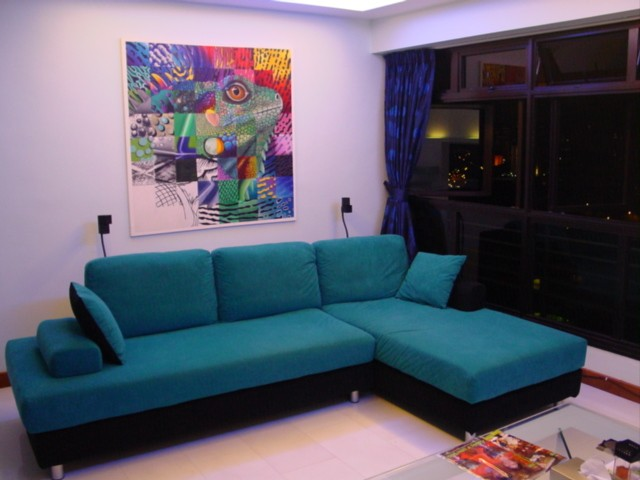108B McNair Rd HDB Resale Cosy Living Room